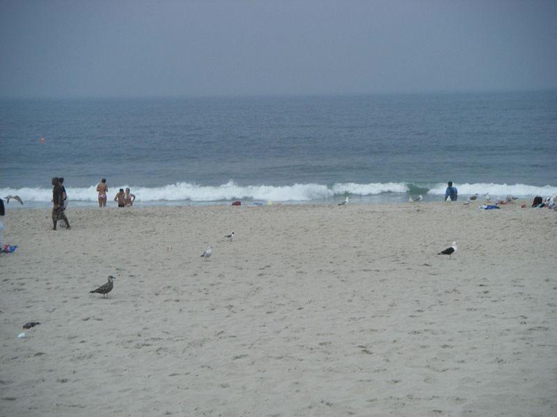 08751 Seaside Heights Weather Forecast Nj